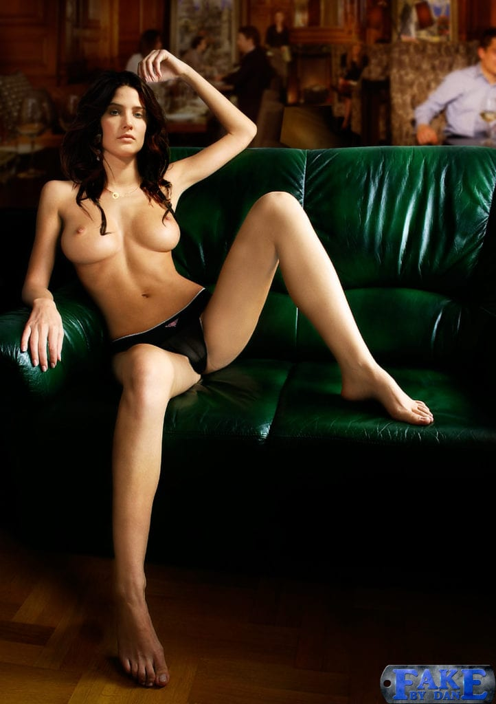1667477 - Cobie_Smulders Robin_Scherbatsky fakebydan