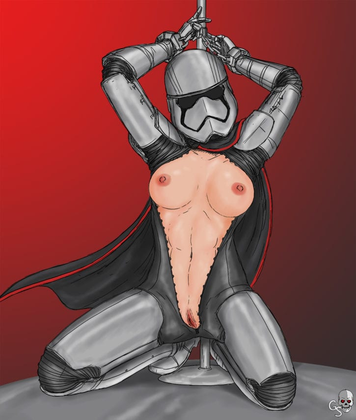 1766107 - Captain_Phasma Gray_Skull Star_Wars The_Force_Awakens